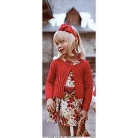 Vestido terciopelo estampado niña